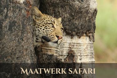 Botswana Maatwerk safari