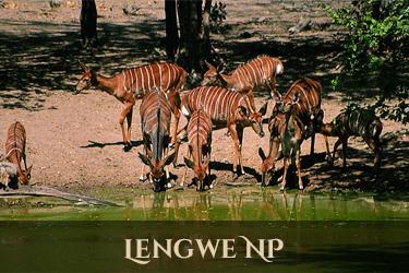 Lengwe