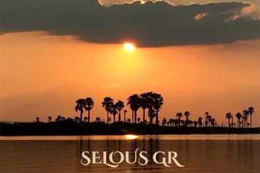 Selous