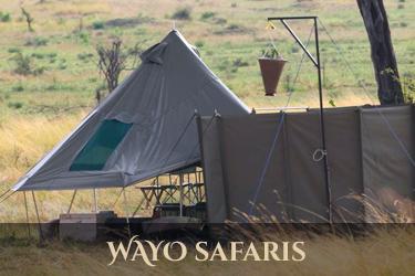 Ways safaris
