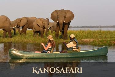 kanosafari